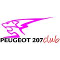 Peugeot 207 Club